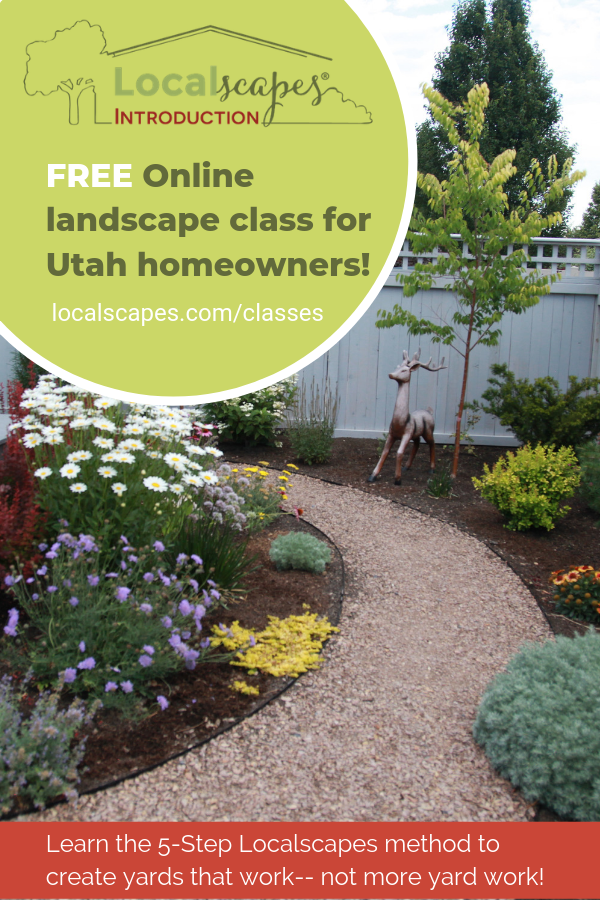 Are You On Pinterest Searching For Ideas To Improve Your Utah Yard We Ve Got You Covered The Localscapes Met Waterwise Landscaping Landscape Landscaping Tips