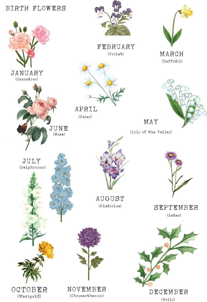 Awesome Birth Month Flowers Uk And Pics In 2020 Birth Flower Tattoos Birth Flowers Month Flowers
