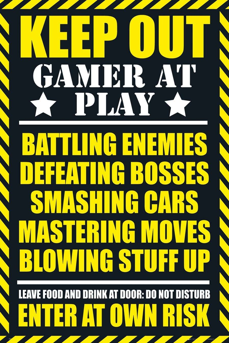 Posters for bedroom doors - Gamer Quotes Google Search Bedroom Doorsgaming Postersgamer