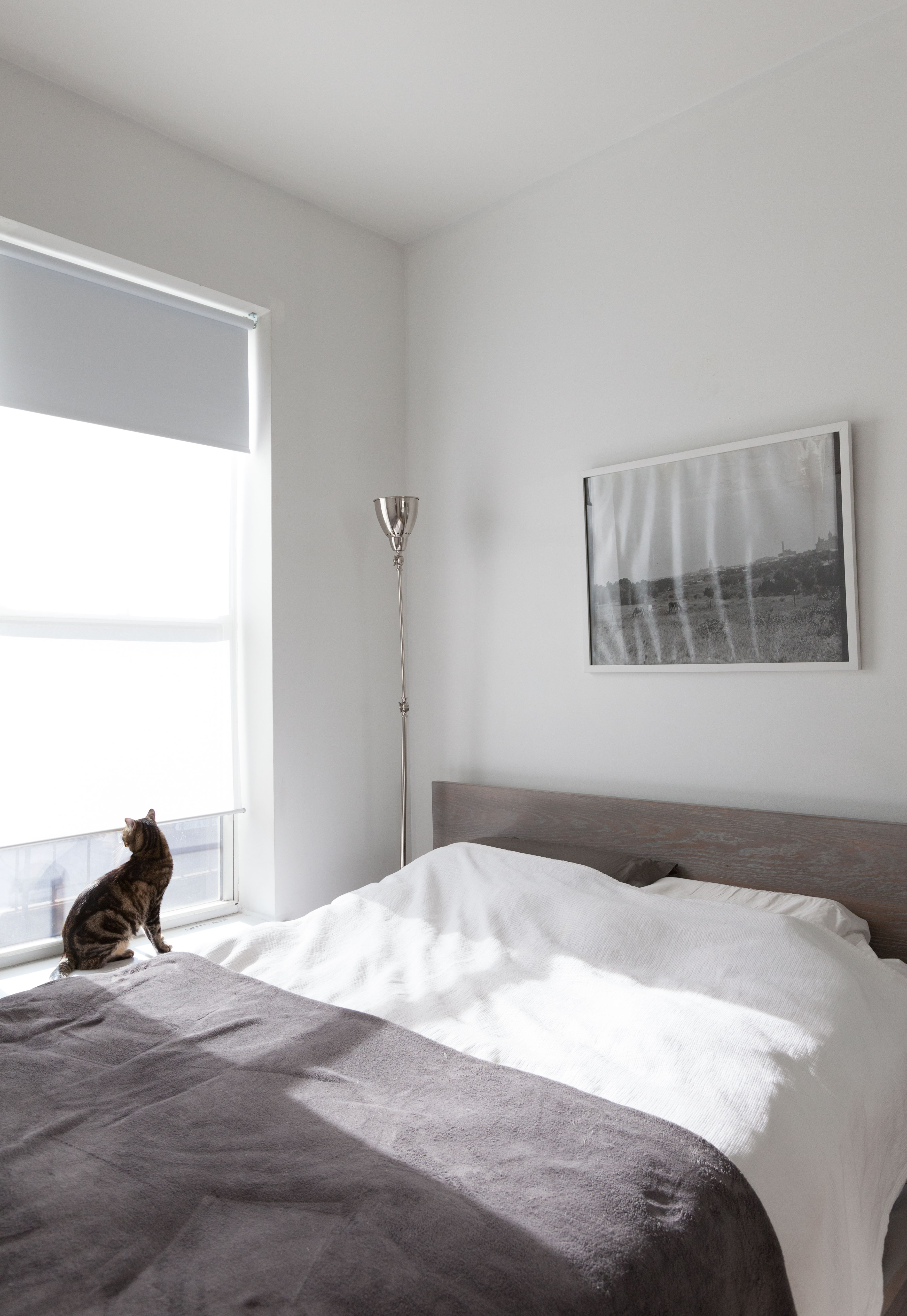 Gif Magic See How Color Changes A Super Small Space Minimalist Bedroom Minimal Bedroom Design Modern Minimalist Bedroom Minimalist room colors gif