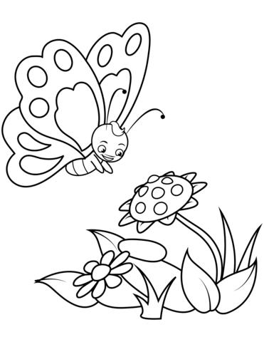 Pin Auf Schmetterling Malbuch
