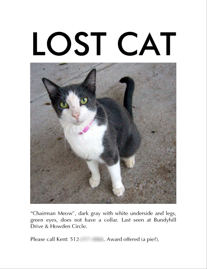 7 Tips For Finding Your Lost Cat Lost Cat Cat Training Cats