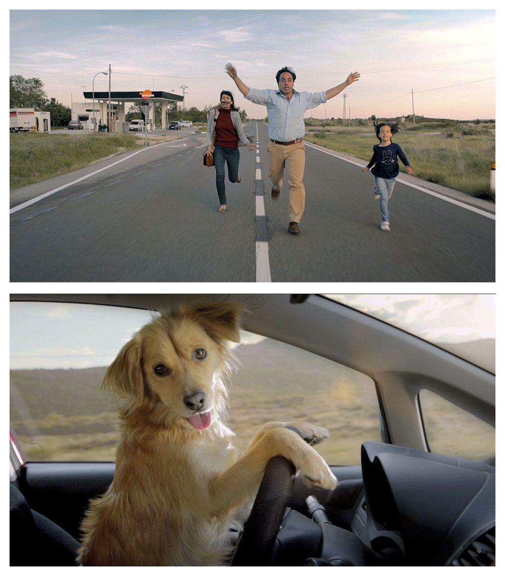 Campaña contra el abandono de animales en la que, por primer vez, una familia es abandonada por su perro.