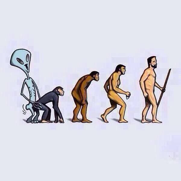 """The (very likely very close to """"The Truth"""") Path of Evolution for ..."""