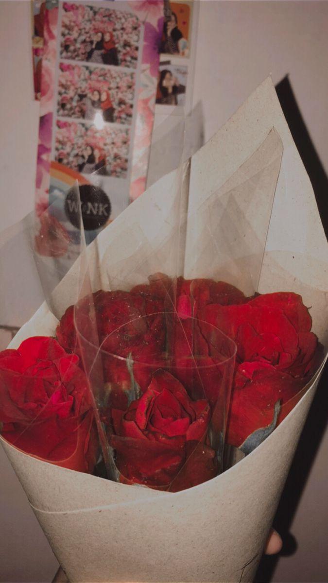 Rose Mawar Merah Fotografi Mawar