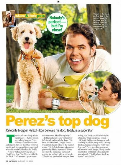 Celebrity Blogger Perez Hilton And His Superstar Pup Teddy Any Relation To Tinkerbell Celebrity Dogs Celebrities Dogs