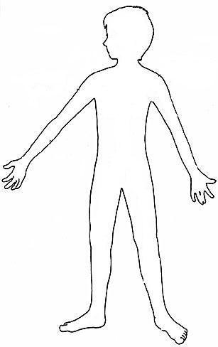 Las partes del cuerpo humano WIKIPEKES para niños | สื่อ yata in ...