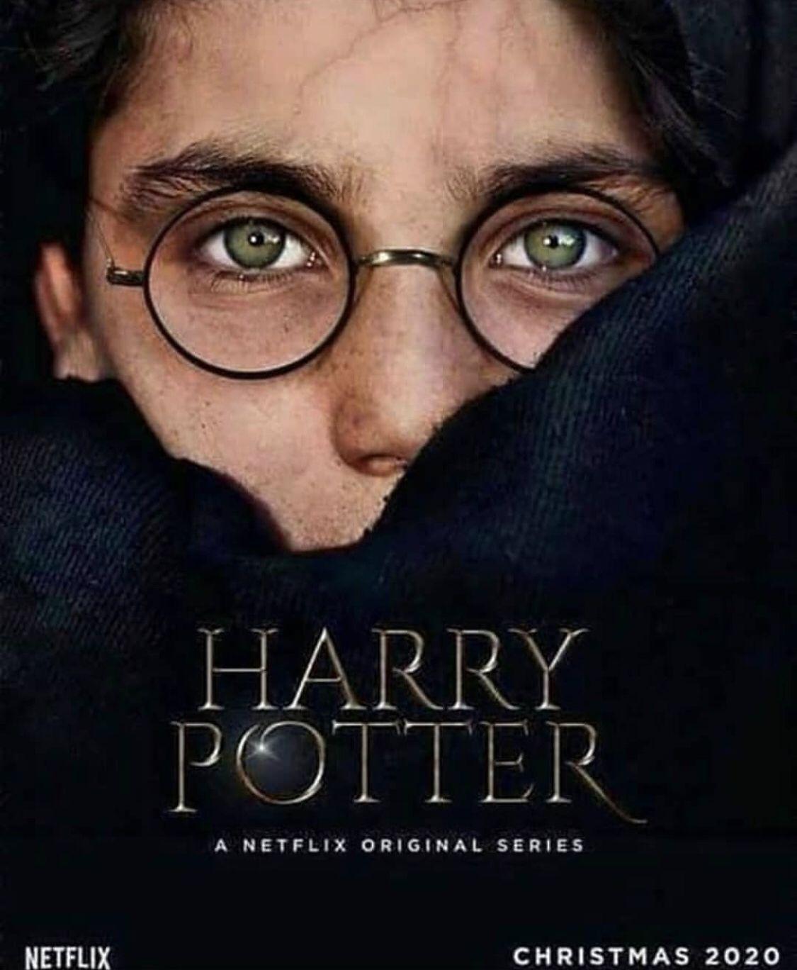 Pin By Eastenbrick On Harry Potter Potter Audio Books Harry Potter