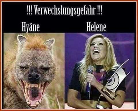 Photo of #real, # witze, #fun bilder, #cat witze ich liebe es .., katzen witze, …   – V…