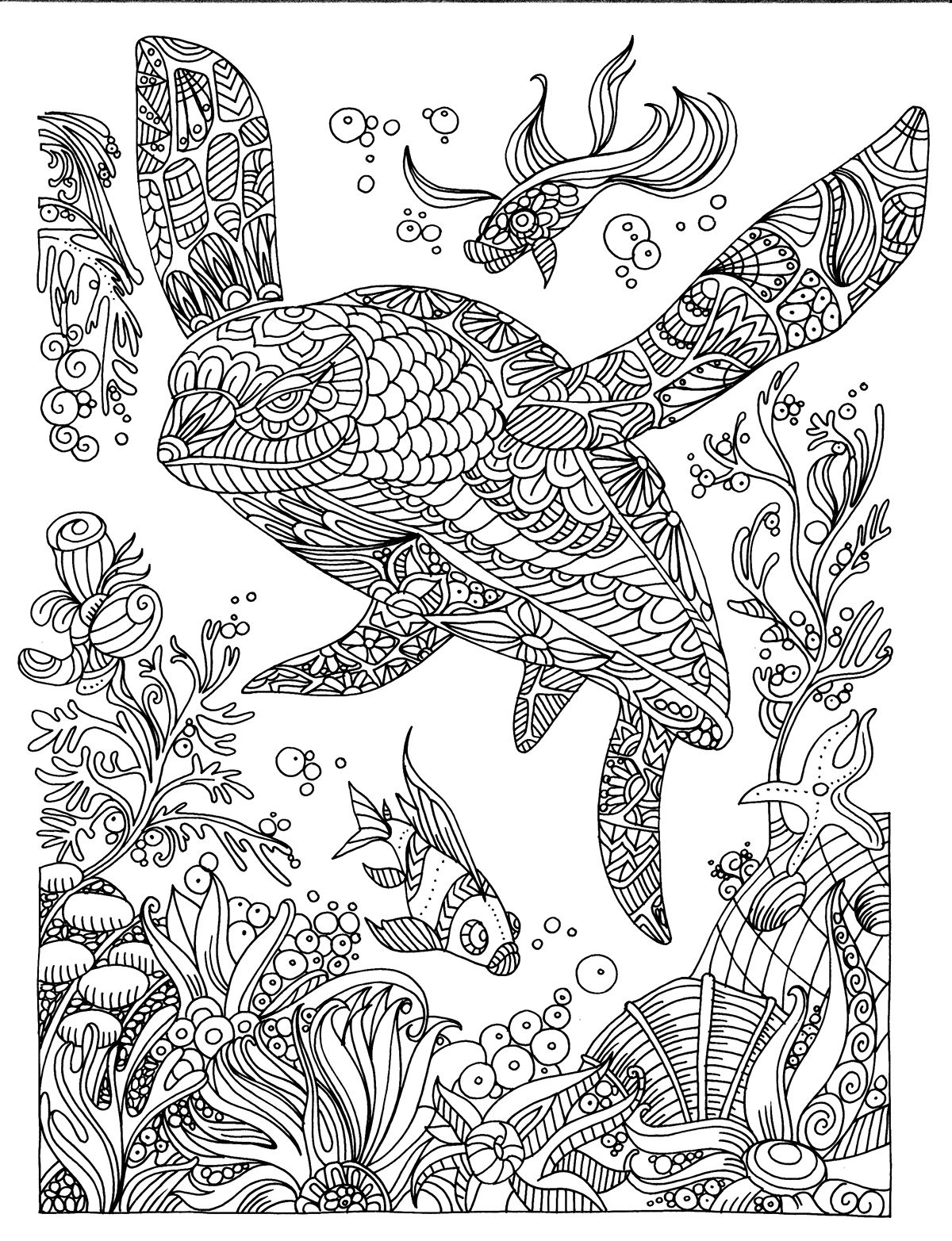 Turtle Illustration Colouring Page Mandalas Zentangle Relaxing