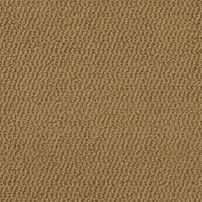 Platinum Plus Perfection Color Tobacco Leaf 12 Ft Carpet 0179d 21 12 The Home Depot Tobacco Leaf Carpet Home Depot