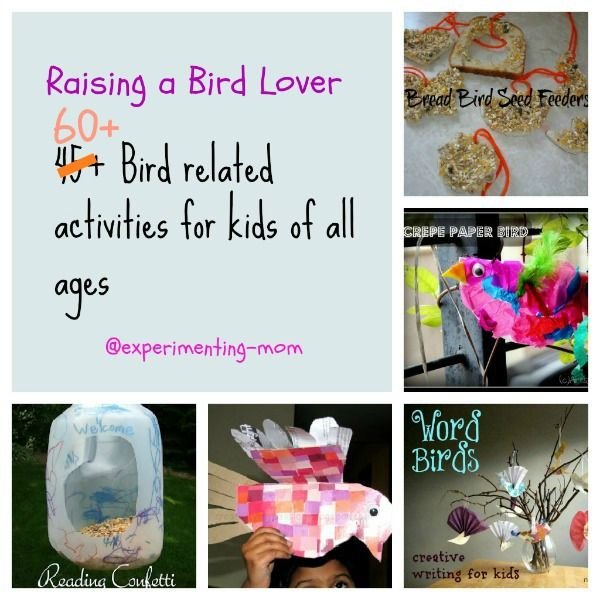 Raising a Bird lover: 60+ Bird related activities for kids of all ages | Art Play Explore