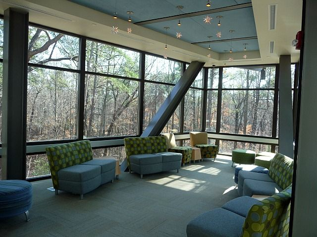 Library In The Forest Vestavia Hills Alabama Tree House Outdoor Decor Patio