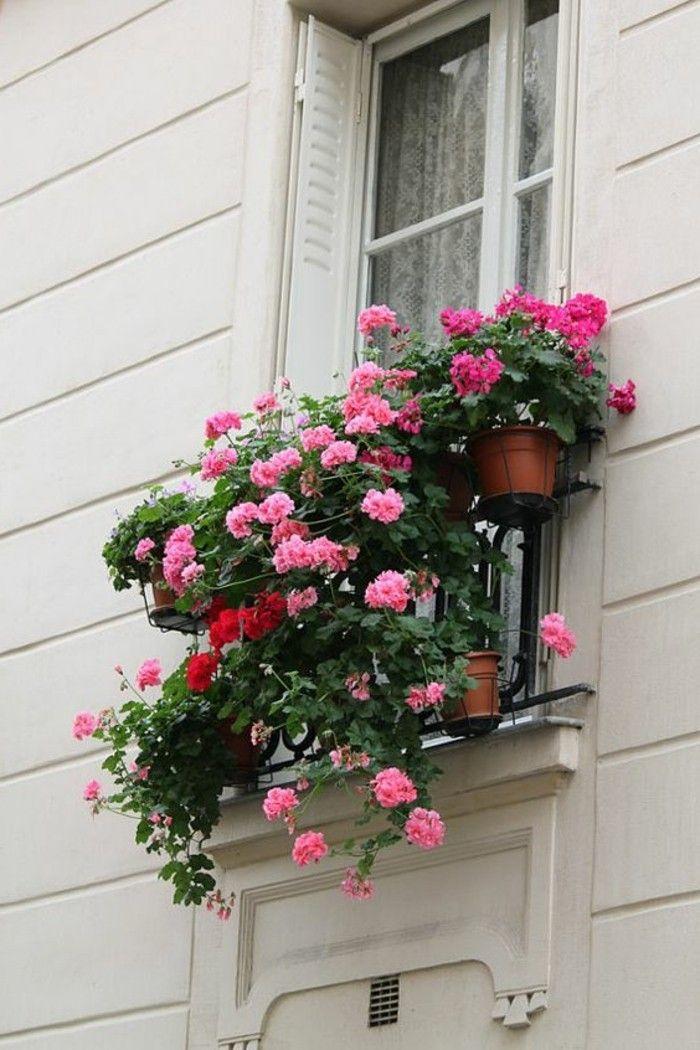 Comment Fleurir Son Balcon En 80 Photos Avec Des Idees Deco