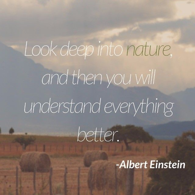 Look Deep into Nature.......-Albert Einstein :-) #lebanonmaniafeatures #startups #lebanonfashion