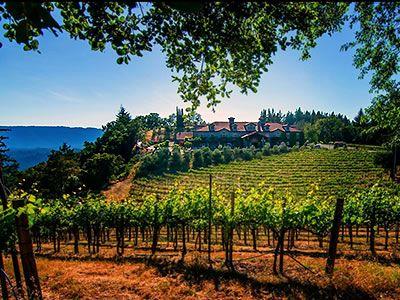 Byington Vineyard And Winery Los Gatos California Wedding Venues 1