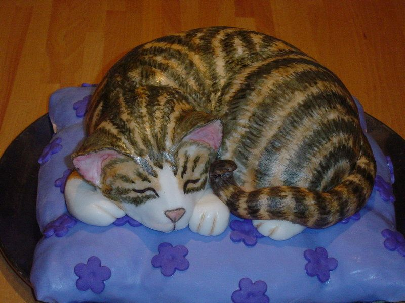 Cat Cake 2 By Shoshannah84 On Deviantart Cakepins Project Cats