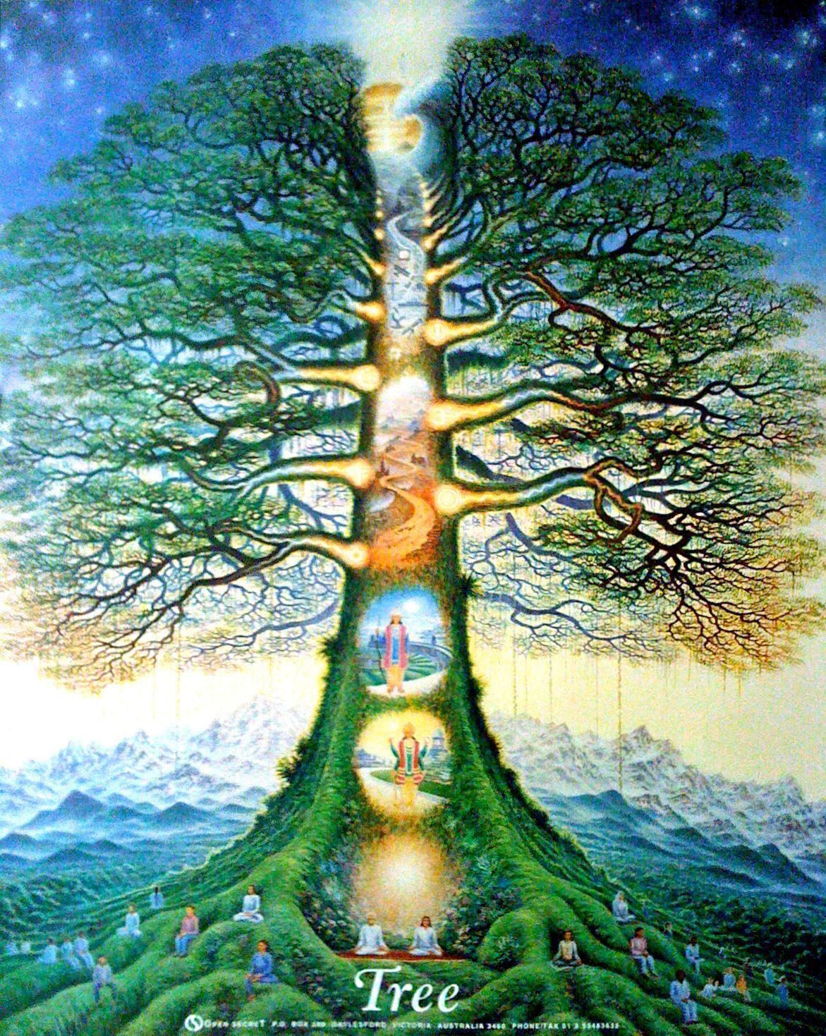 The Story Of The Garden Of Eden True Or False Tree Of Life Art