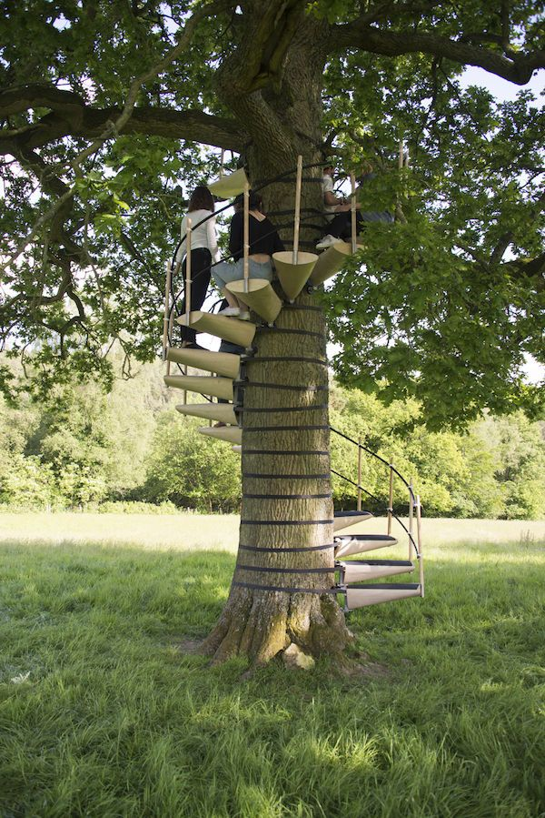 Beautiful Tree Hugging Spiral Staircases