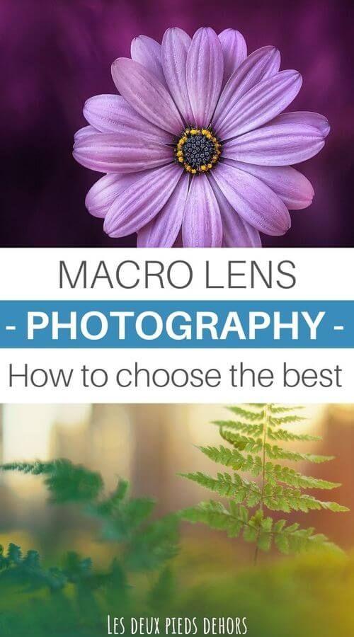Pin On Macro Photography