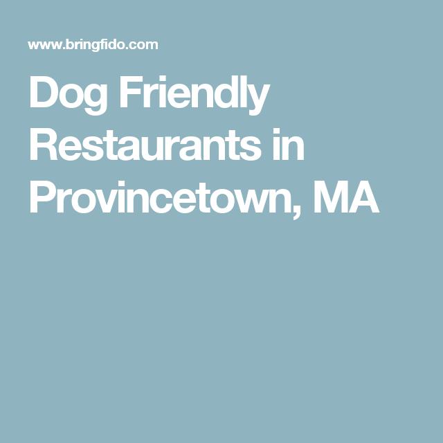 Dog Friendly Restaurants in Provincetown, MA