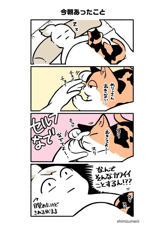 清水めりぃ 10 4単行本2巻発売予定 zatta shimizu さんの漫画 111作目 ツイコミ 仮 じん 漫画 マンガ