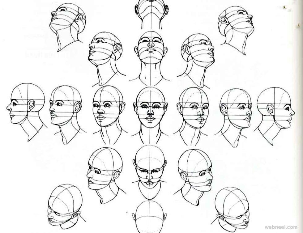 Pin By Kevin Pham On Drawing Models Drawing The Human Head Human Drawing Sketches