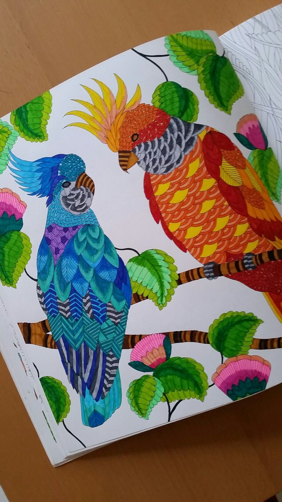 Tropical World By Millie Marotta Coloring Book