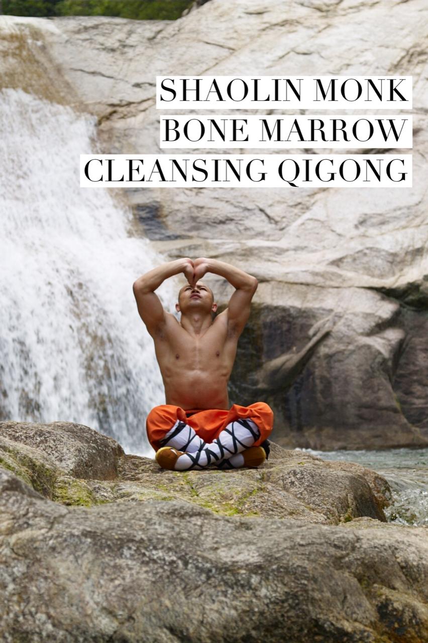 Online Training Course - Xi Sui Jing ( Bone Marrow Cleansing