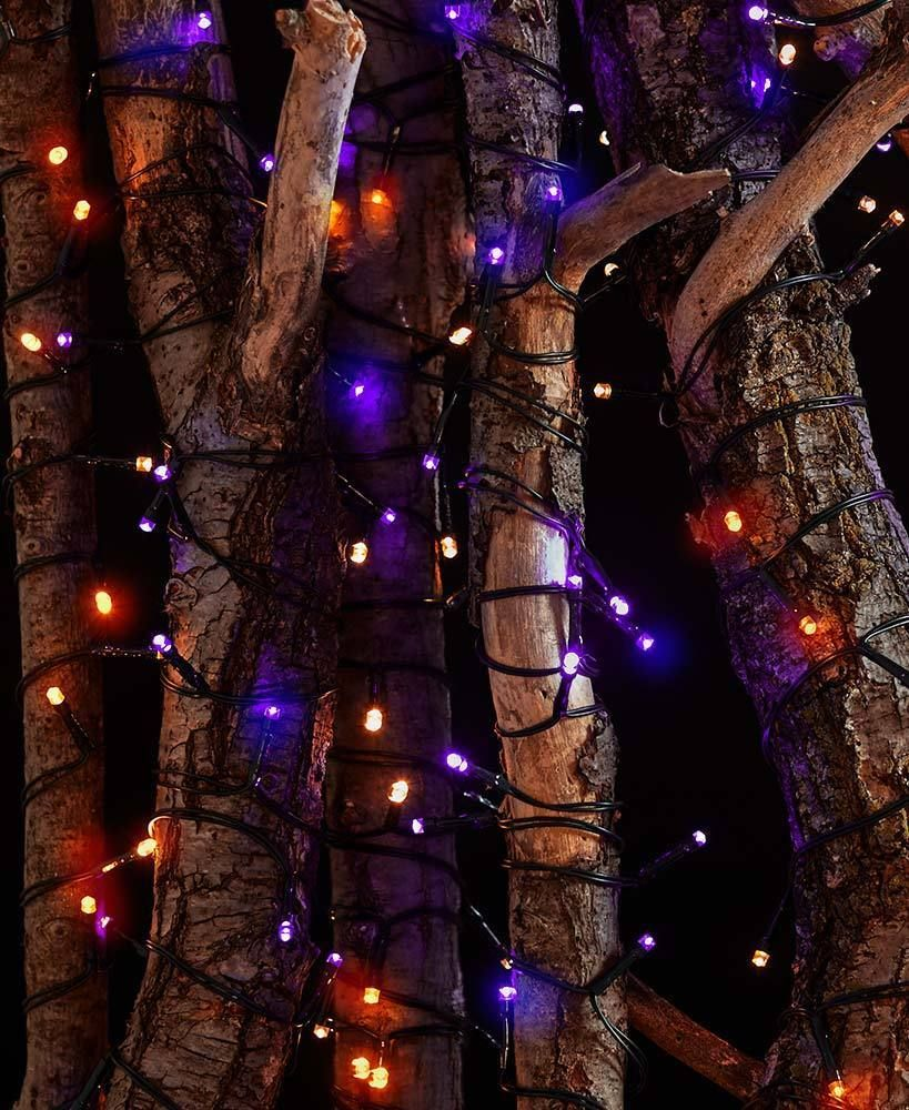 Led Halloween Lights 2pk 100 Solar Led Lighted Halloween String Lights Outdoor Lighting