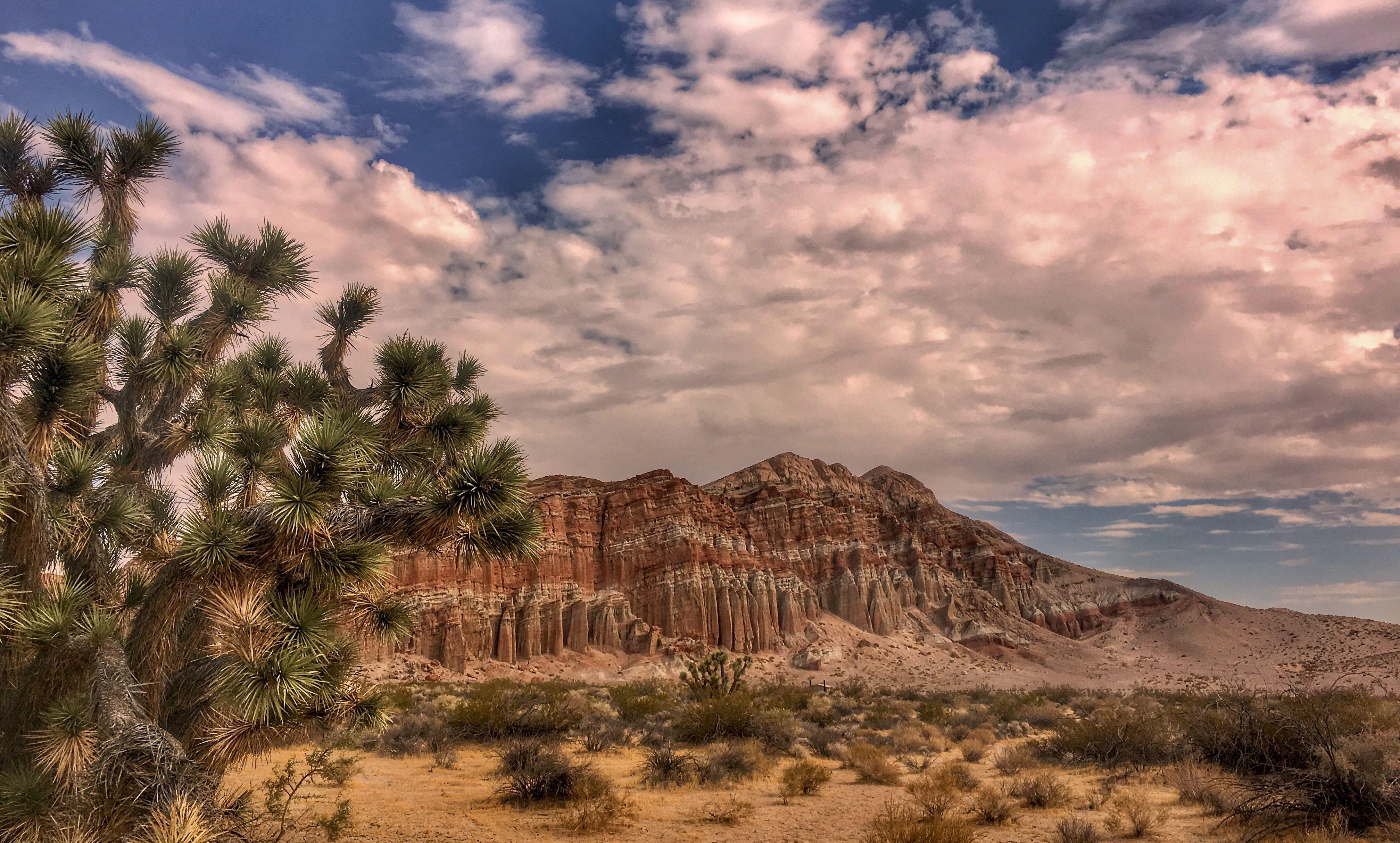 Red Rock Canyon State Park California My Gallery State