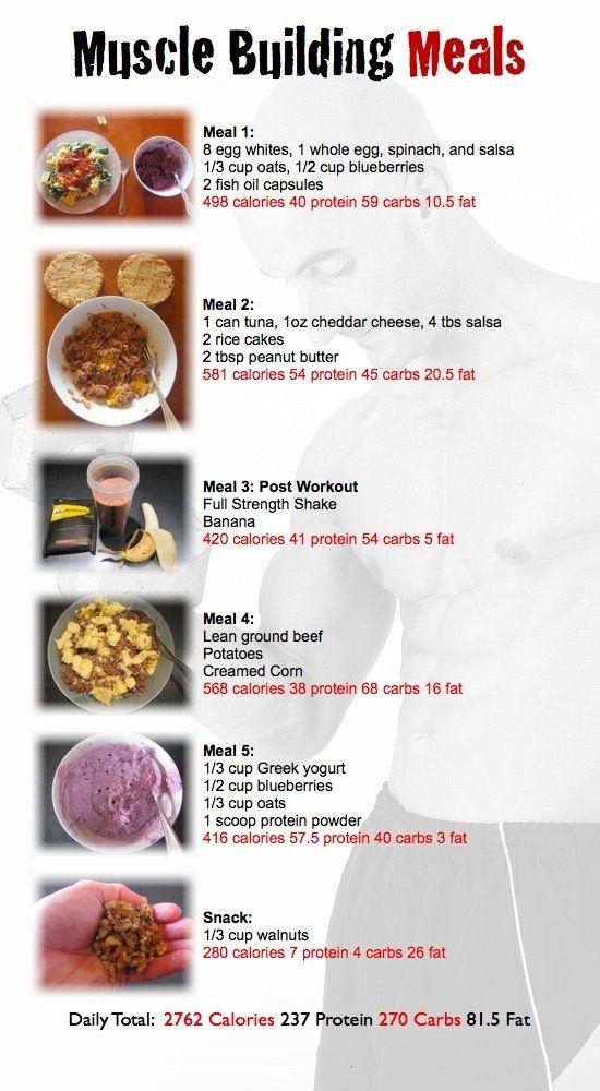 muscle building diet sample plan