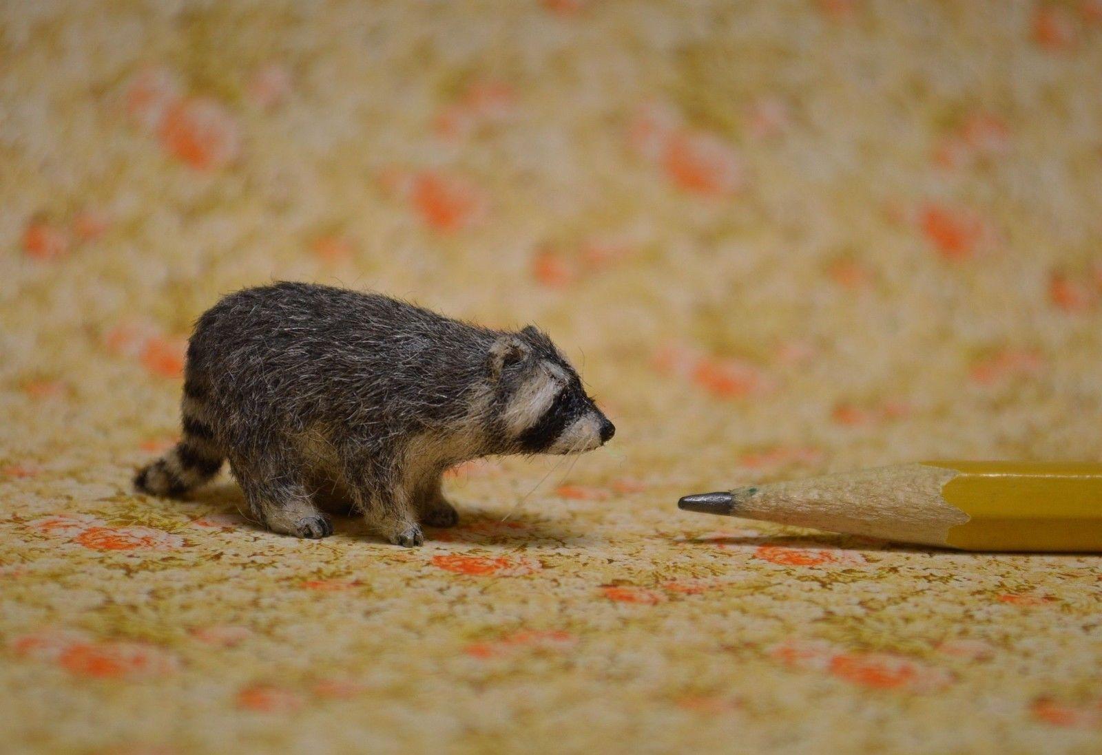 OOAK 1 12 Dollhouse Miniature Raccoon Wildlife Nature IGMA Fellow Linda Master | eBay