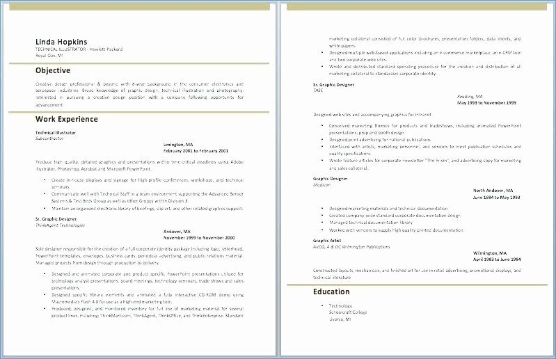 Executive Resume Template Word Inspirational Great Resume