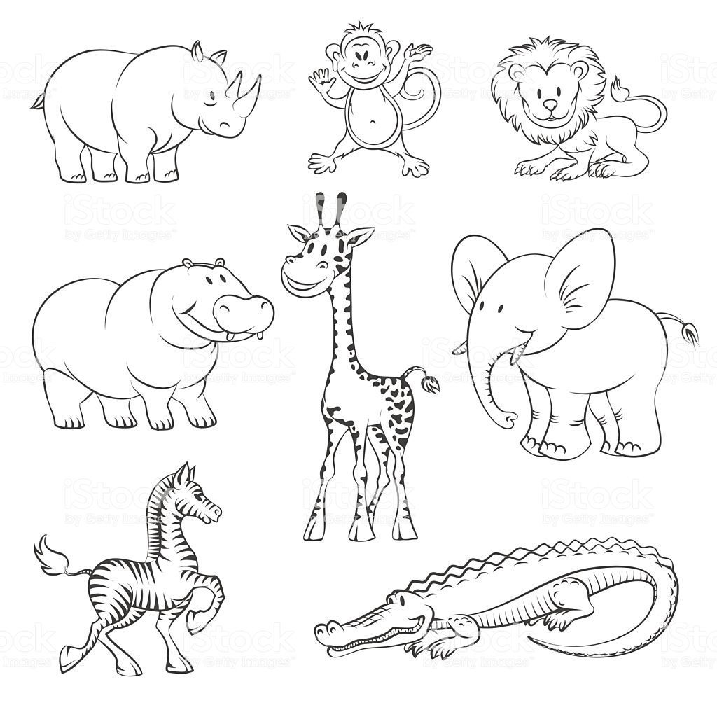 Safari and jungle animals in hand drawn style. African