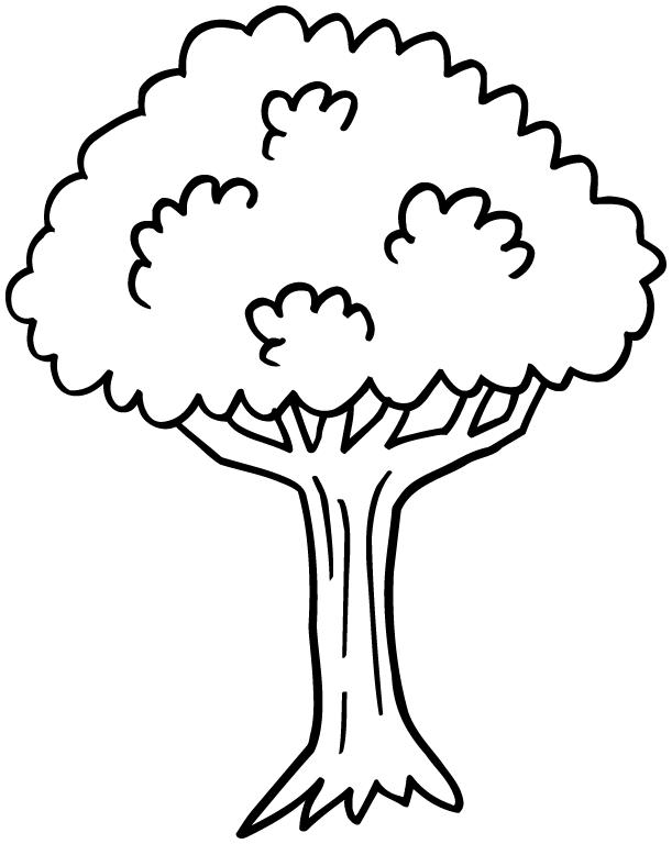 r sultat de recherche d 39 images pour dessin arbre. Black Bedroom Furniture Sets. Home Design Ideas