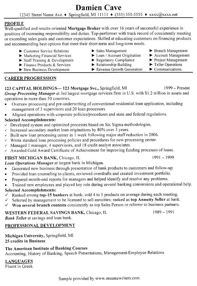 example of professional business resume to facilitate lender financing