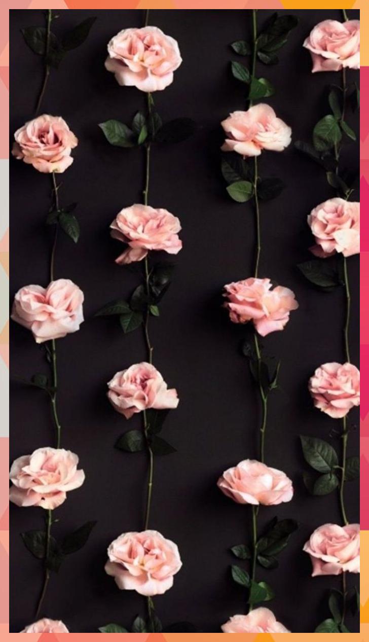 All Images Net Wallpaper Iphone Pinterest Best Off 234