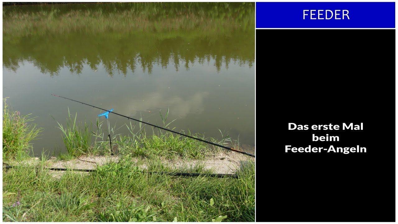 Das erste Mal beim Feeder Angeln Fishing Point | Angeln