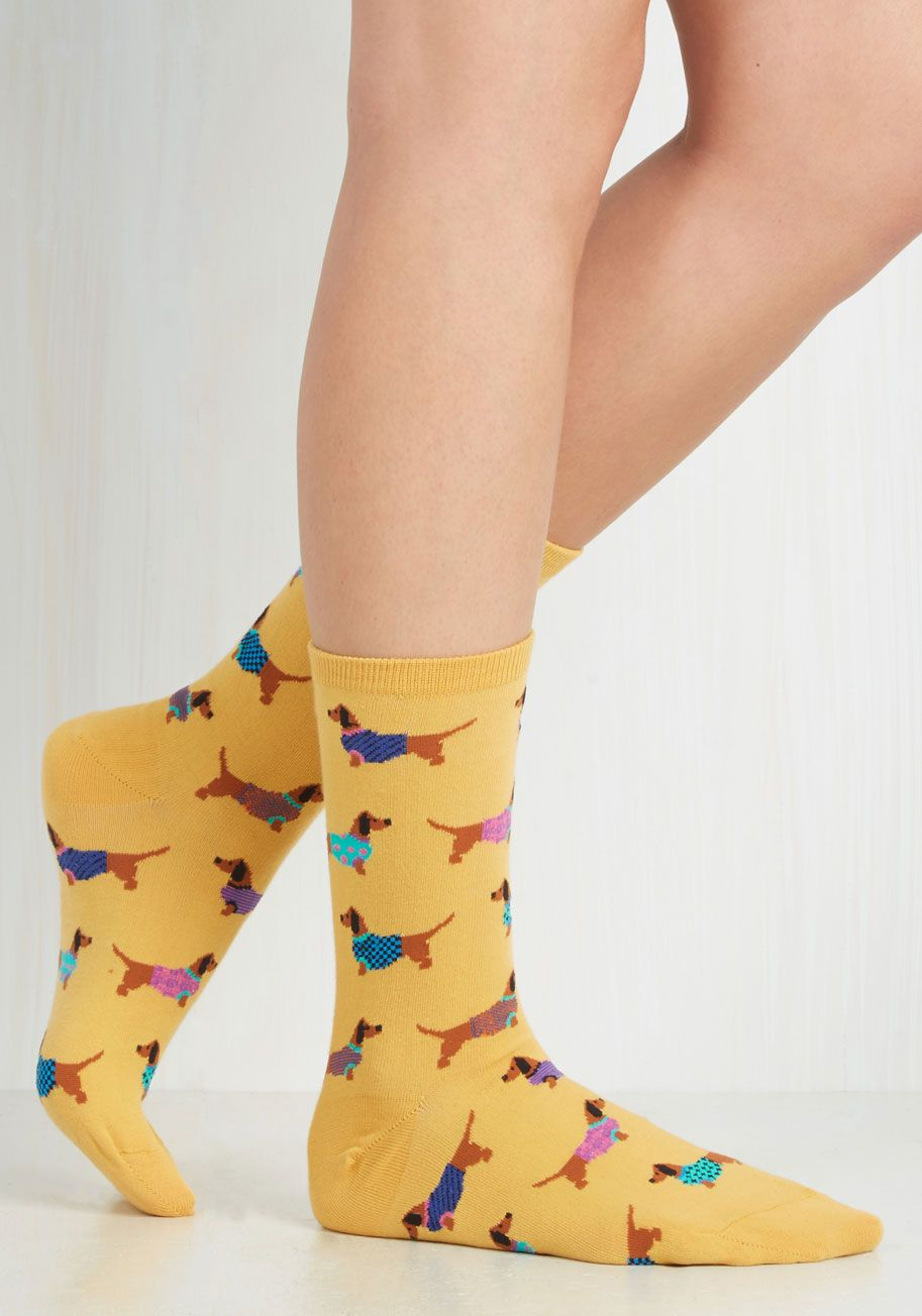 Gold Medal Wiener Dog Socks. Your outfits are always top-notch, especially  when - Truly Trustworthy Tights In Chocolate Dog Socks, Wiener Dogs And