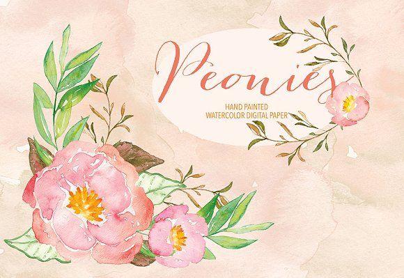 Watercolor peonies by designloverstudio on @creativemarket