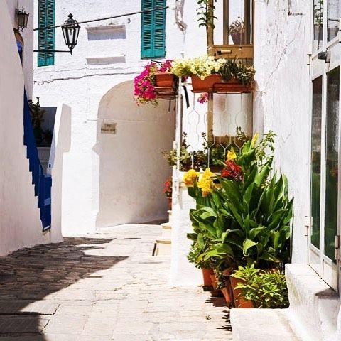 La città bianca di Ostuni, Puglia.  Hai voglia di cambiare aria?  Scopri come può aiutarti #giftsitter cliccando sul link in bio.  #giftsittermania #puglia #salento #viaggiare #vacanza #travel #italy #sud #sole #blog #blogviaggi #picoftheday #ostuni #meraviglia #italiana #valigia #inspiration #primavera