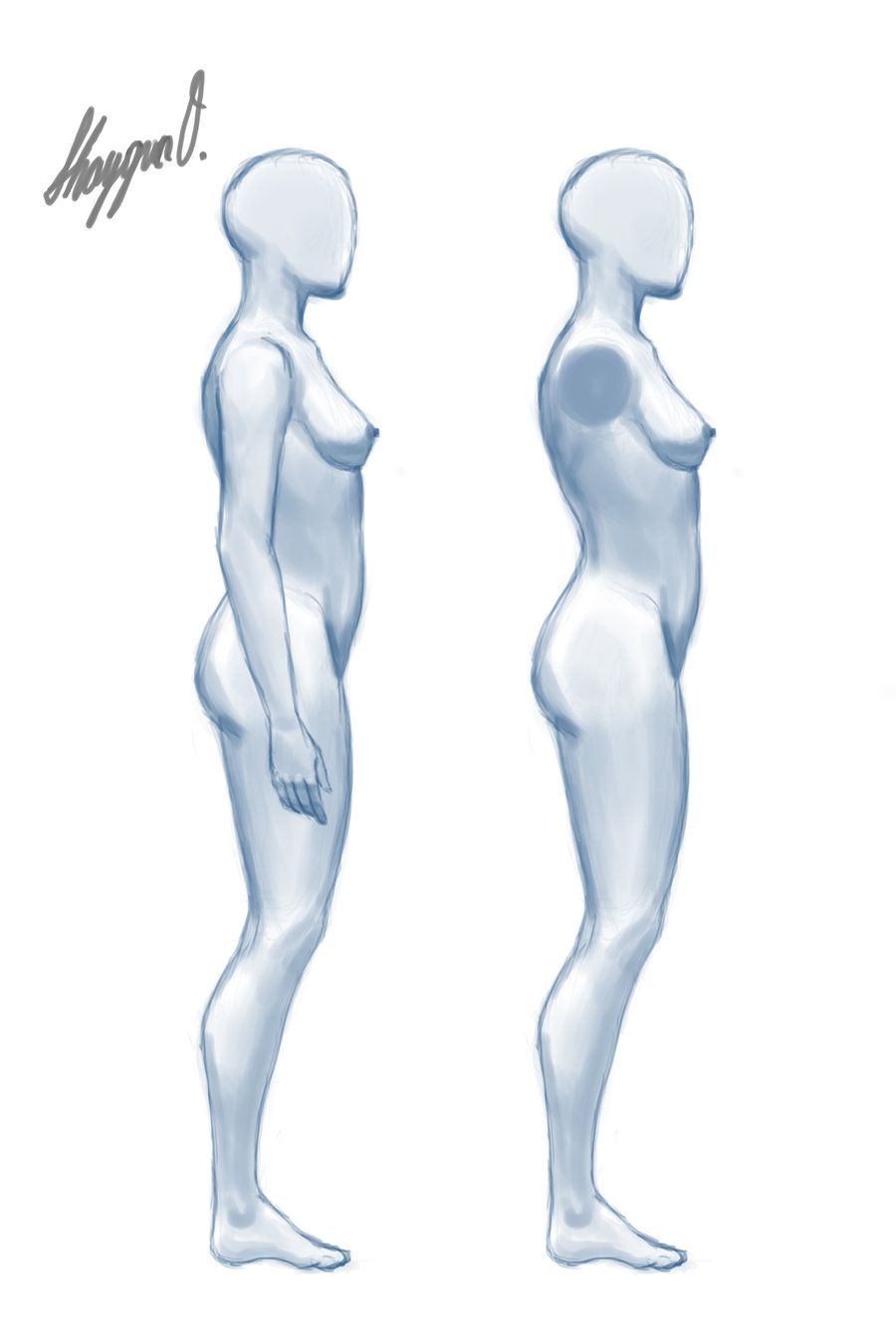 Female Anatomy Template: Side by ~Shintenzu on deviantART | Figure ...