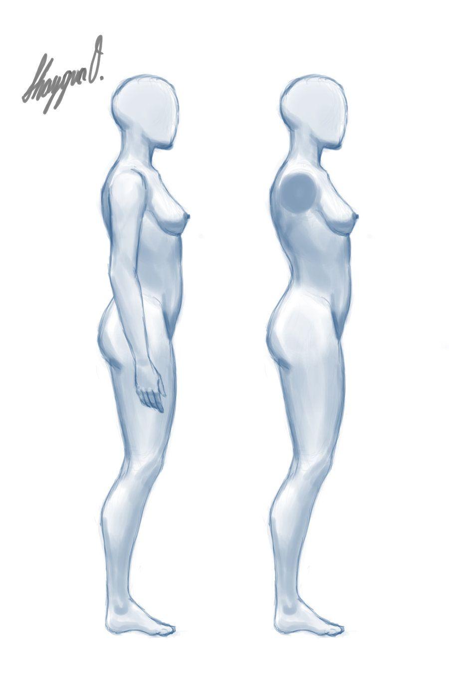 Female Anatomy Template Side By Shintenzu On Deviantart Figure
