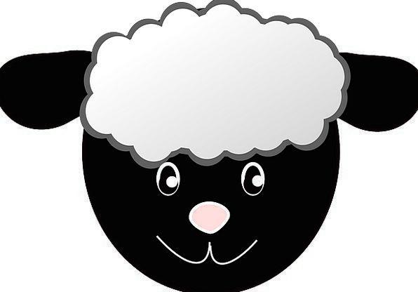 Sheep Ewe Skull Happy Content Head Face Expression Sheep Cartoon Sheep Face Cartoon Head