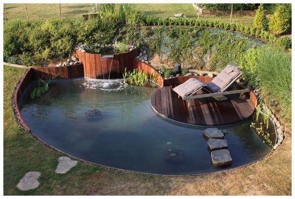 Forum aquajardin bassin ko jardin aquatique mare for Bassin etang