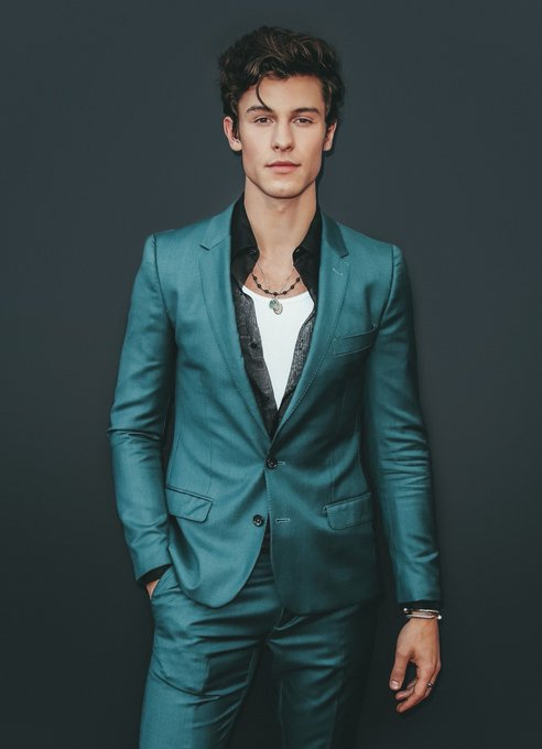 Pin By Kloe Bird On Shawn Mendes Aka My Husband Shawn Mendes Shawn Mendes Imagines Shawn