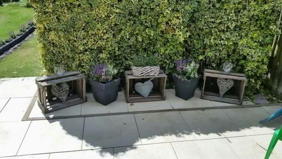 Eine Hecke Verschonern Garten Garten Blumen Und Fruhling