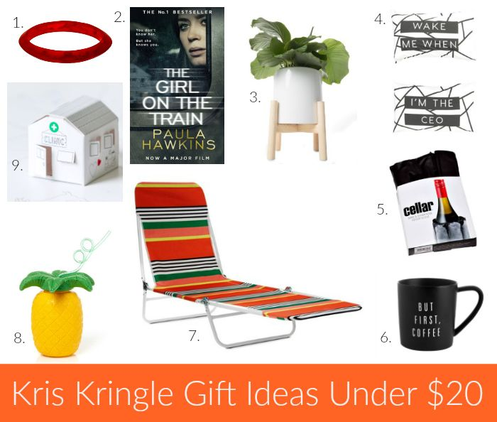 Unisex christmas gifts ideas under $25