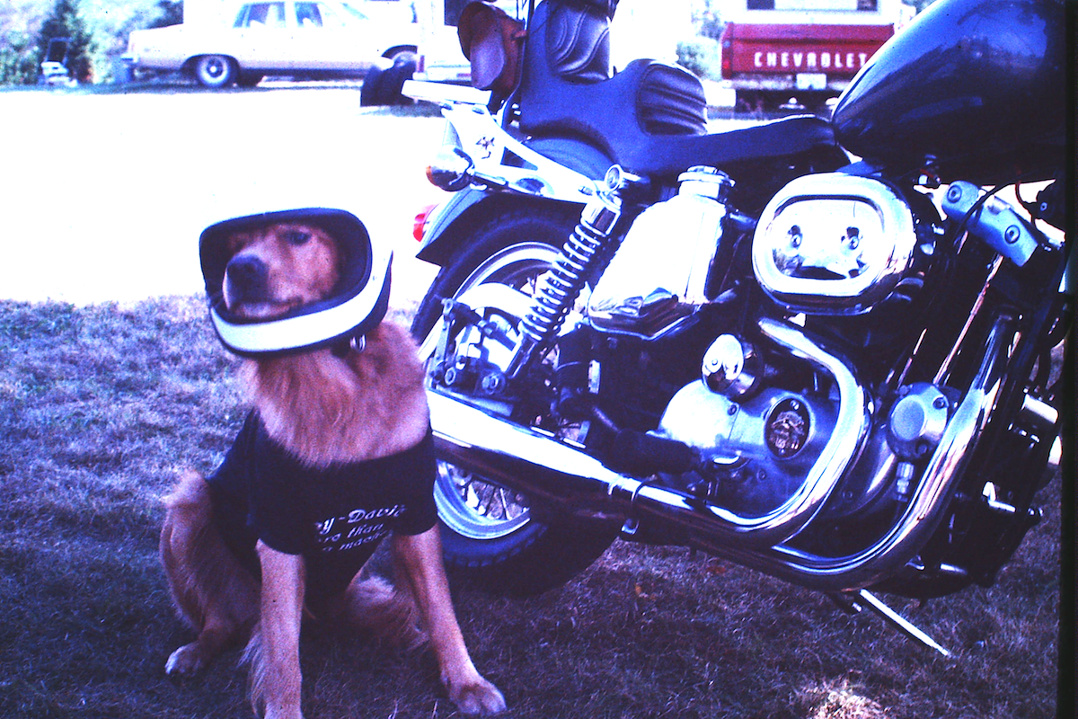 My son Ben, ready to ride! 1977 Harley Sportster Big